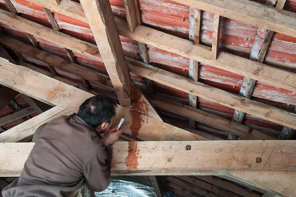 Bouwtip: hoe voorkom je lekkages op je dak?
